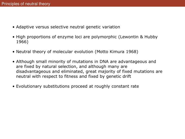 Principles of neutral theory