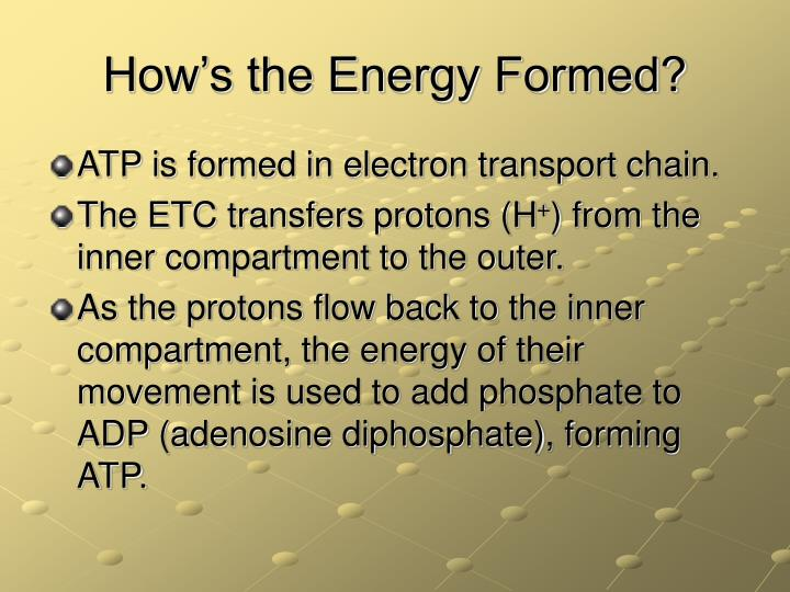 How's the Energy Formed?
