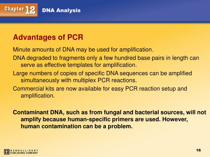 Minute amounts of DNA may be used for amplification.