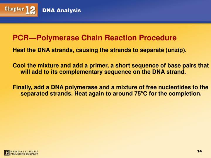 Heat the DNA strands, causing the strands to separate (unzip).