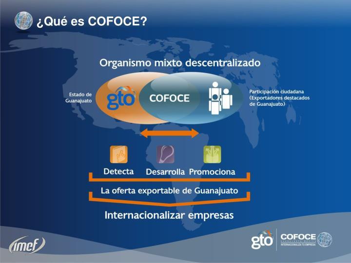 ¿Qué es COFOCE?