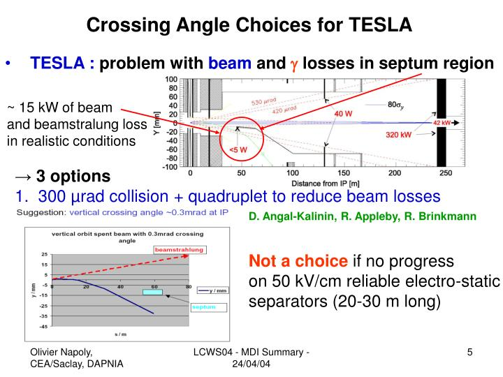 Crossing Angle Choices for TESLA