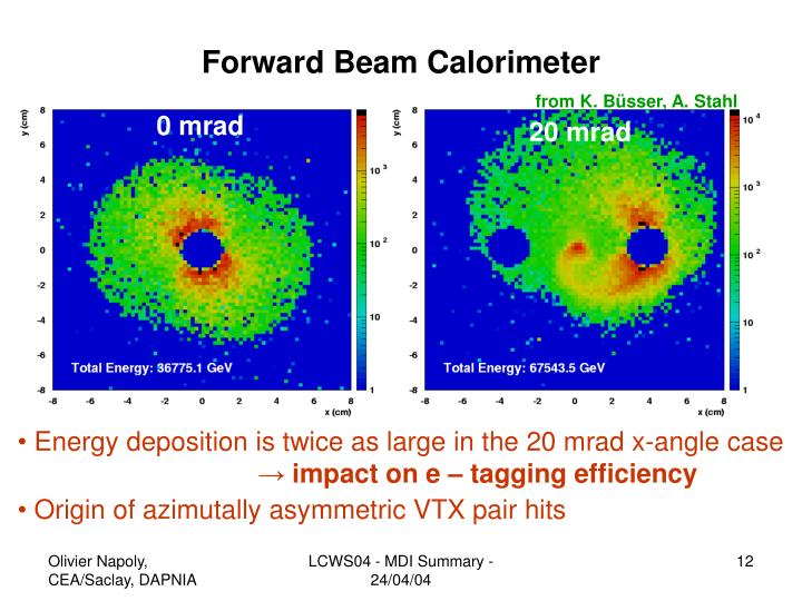Forward Beam Calorimeter