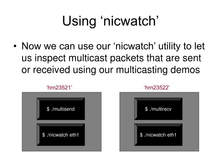 Using 'nicwatch'