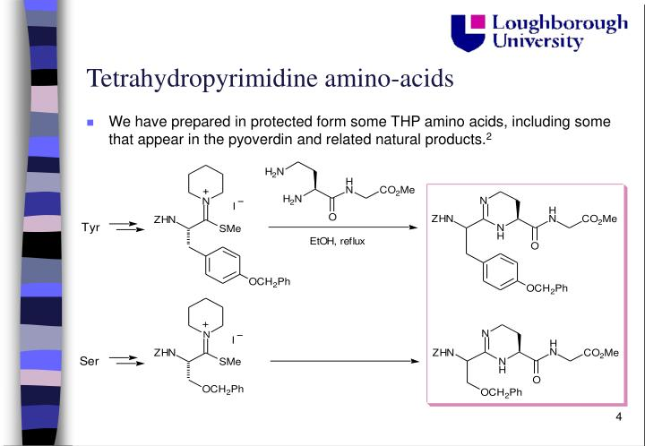 Tetrahydropyrimidine amino-acids