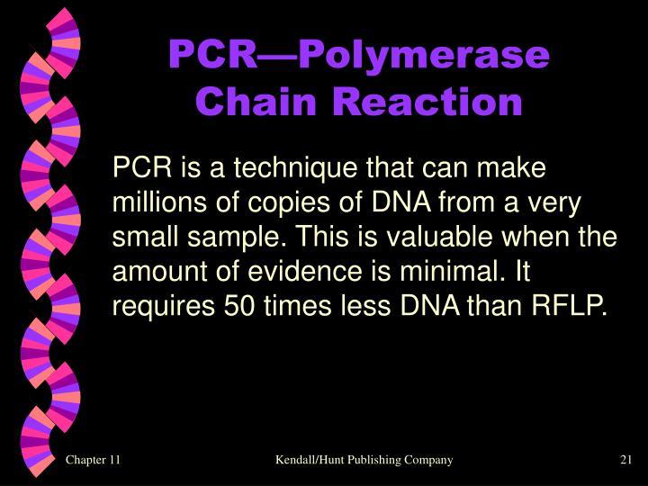 PCR—Polymerase