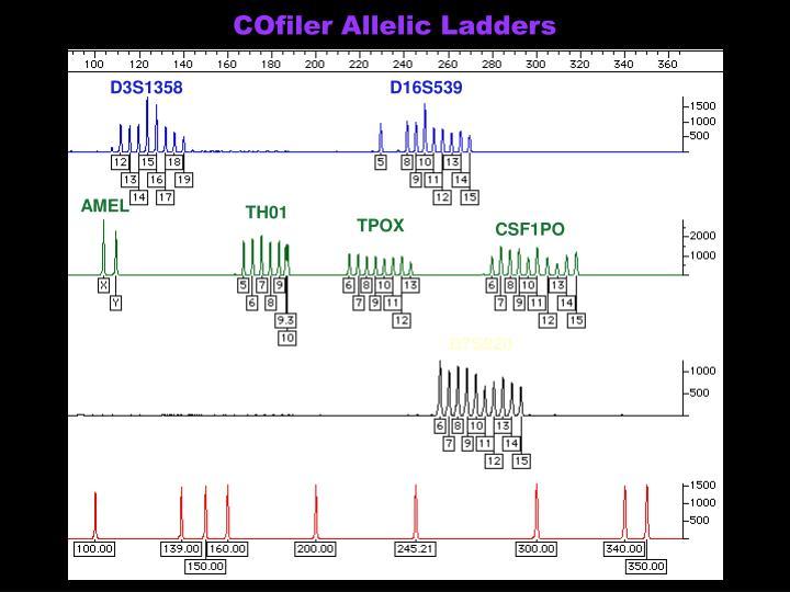 COfiler Allelic Ladders
