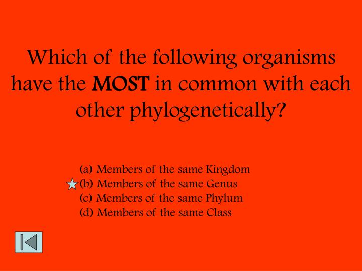 Which of the following organisms have the
