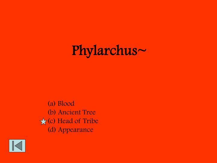 Phylarchus~