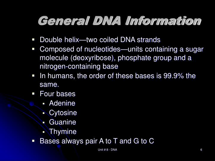 General DNA Information