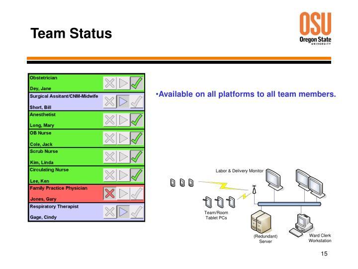 Team Status