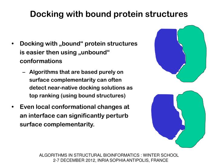 Docking with bound protein structures