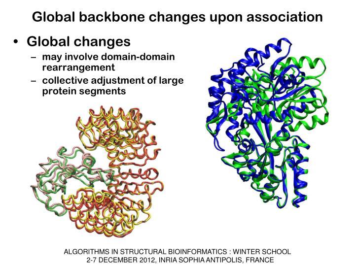 Global backbone changes upon association