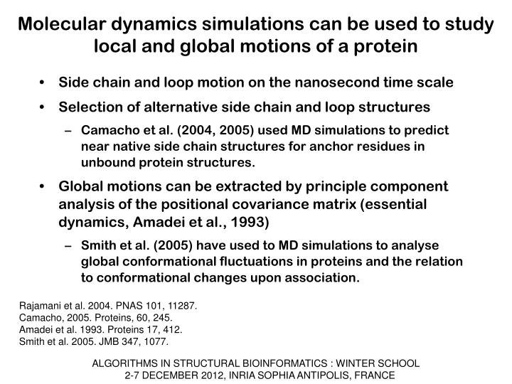 Molecular dynamics simulations can be used to study local and global motions of a protein