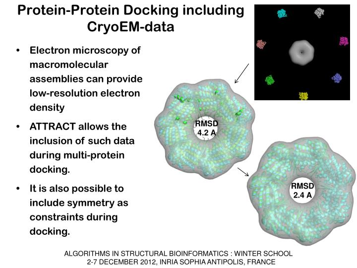 Protein-Protein Docking including