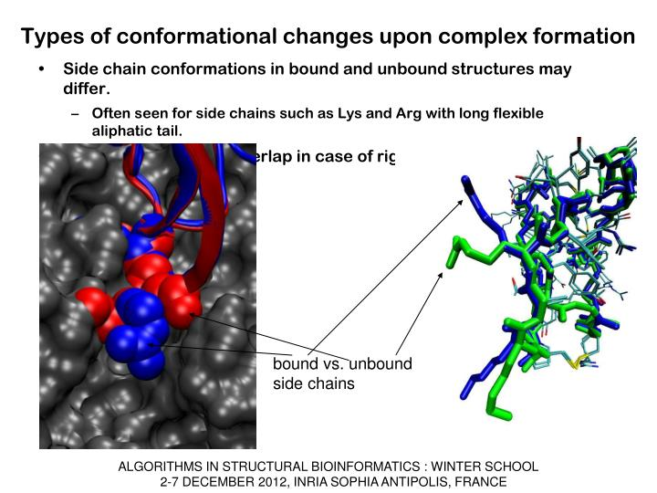 Types of conformational changes upon complex formation