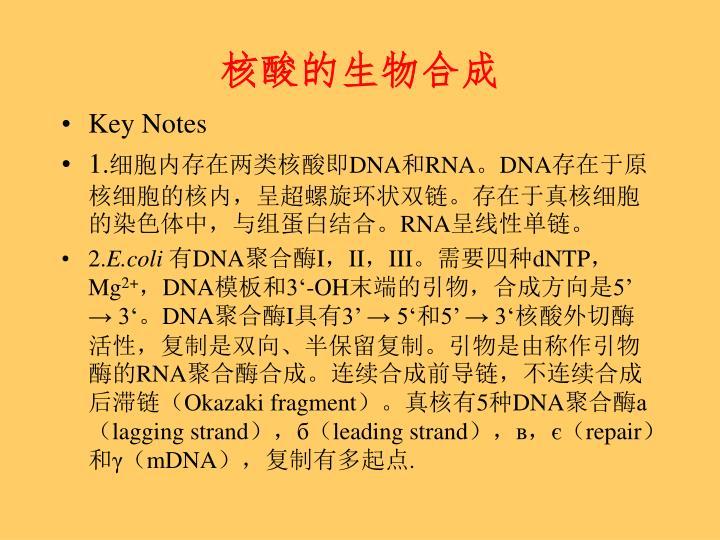 核酸的生物合成