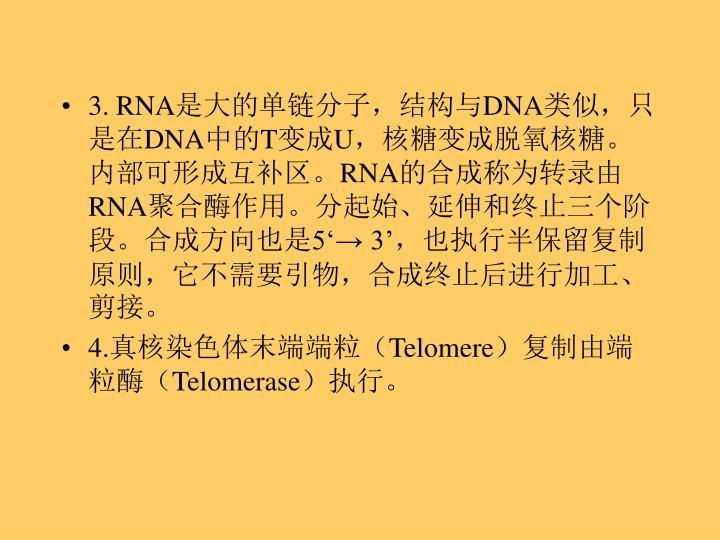3. RNA