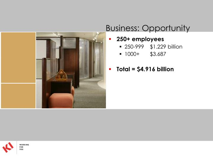 Business: Opportunity
