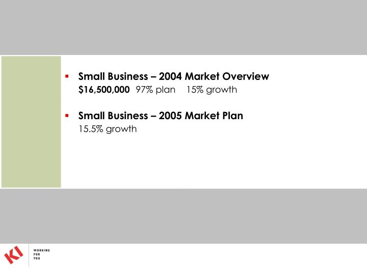 Small Business – 2004 Market Overview