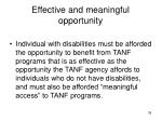 effective and meaningful opportunity