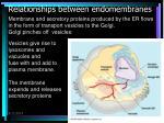 relationships between endomembranes