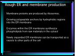 rough er and membrane production
