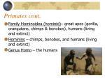 primates cont
