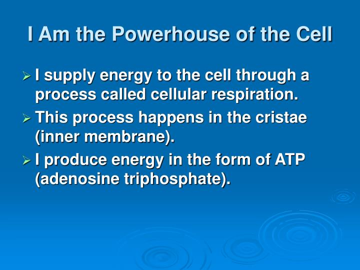 I Am the Powerhouse of the Cell