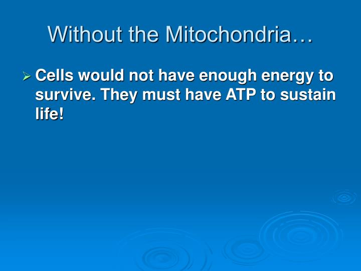 Without the Mitochondria…