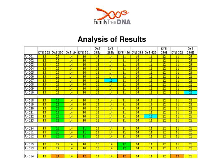 Analysis of Results