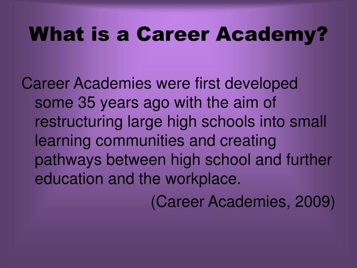 What is a career academy
