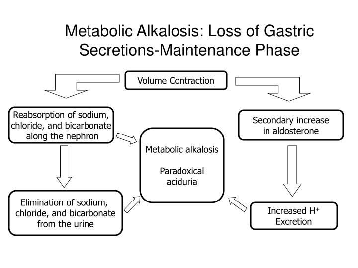 Metabolic Alkalosis: Loss of Gastric Secretions-Maintenance Phase