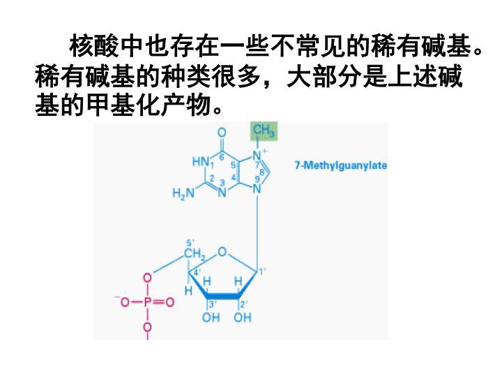 核酸中也存在一些不常见的稀有碱基。稀有碱基的种类很多,大部分是上述碱基的甲基化产物。