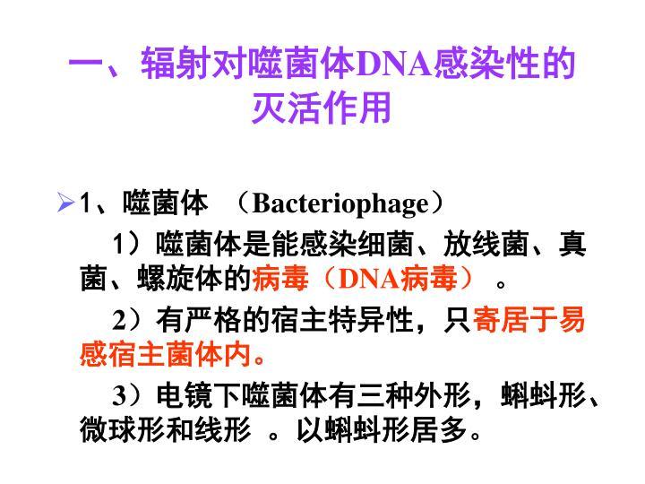 一、辐射对噬菌体