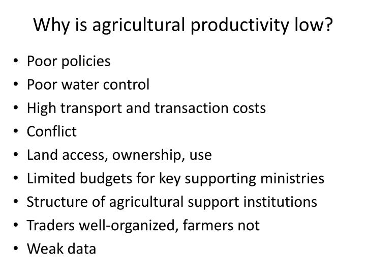 reason for low agriculture productivity Raising agricultural productivity in africa options for action, and the role of subsidies future agricultures kept prices low for the benefit of consumers.