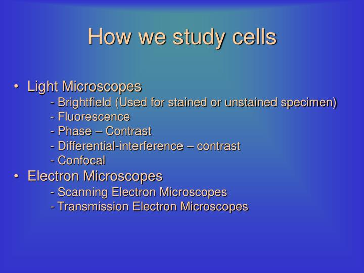 How we study cells