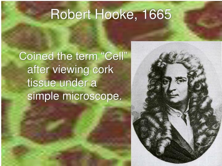 Robert Hooke, 1665