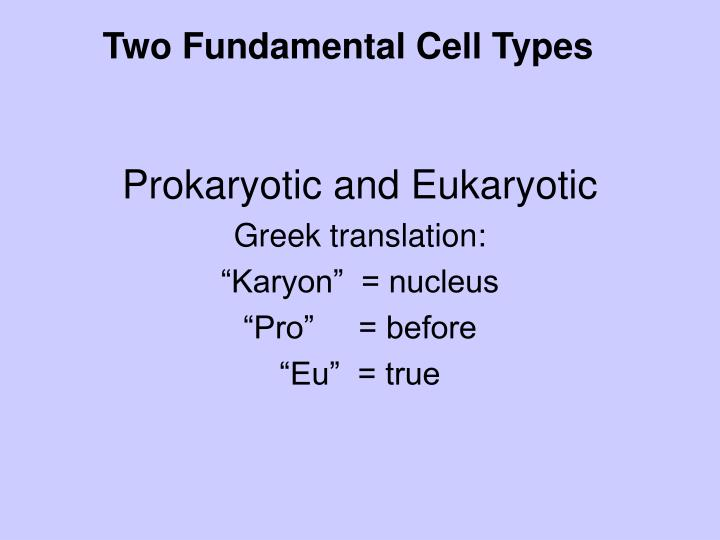 Two Fundamental Cell Types