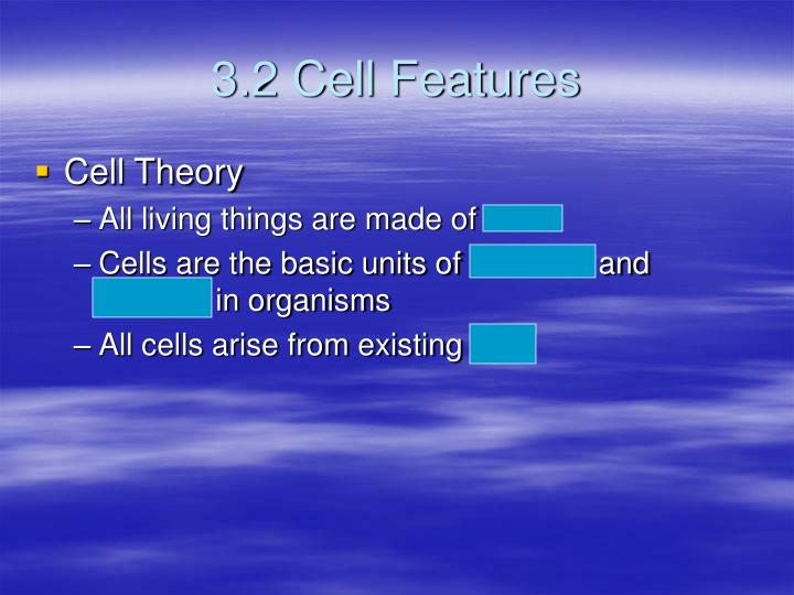 3.2 Cell Features