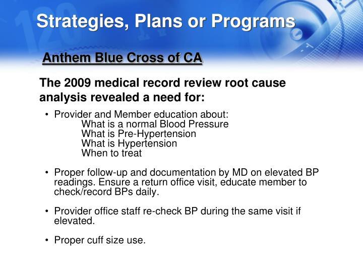 Strategies, Plans or Programs