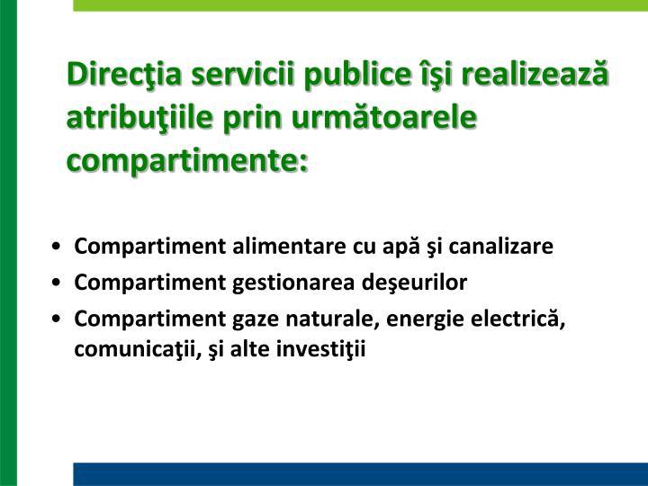 Direcţia servicii publice îşi realizează atribuţiile prin următoarele compartimente: