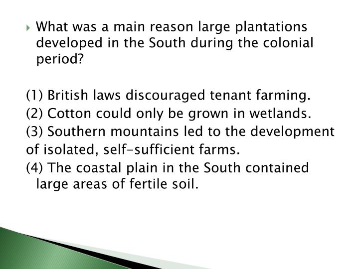 What was a main reason large plantations developed in the South during the colonial period?