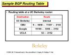 sample bgp routing table
