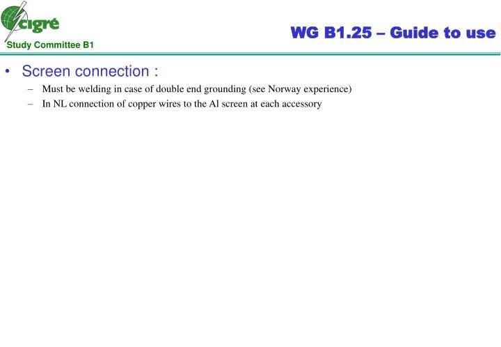 WG B1.25 –