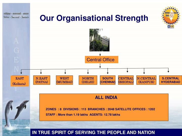 Our Organisational Strength