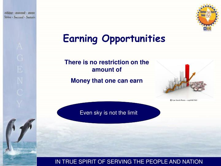 Earning Opportunities