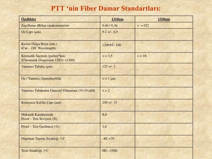 PTT 'nin Fiber Damar Standartları: