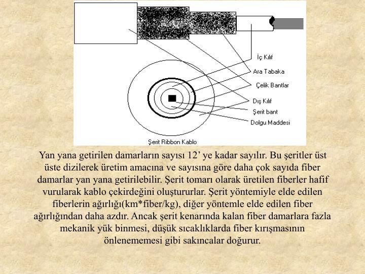Yan yana getirilen damarların sayısı 12' ye kadar sayılır. Bu şeritler üst üste dizilerek üretim amacına ve sayısına göre daha çok sayıda fiber damarlar yan yana getirilebilir. Şerit tomarı olarak üretilen fiberler hafif vurularak kablo çekirdeğini oluştururlar. Şerit yöntemiyle elde edilen fiberlerin ağırlığı(km*fiber/kg), diğer yöntemle elde edilen fiber ağırlığından daha azdır. Ancak şerit kenarında kalan fiber damarlara fazla mekanik yük binmesi, düşük sıcaklıklarda fiber kırışmasının önlenememesi gibi sakıncalar doğurur.