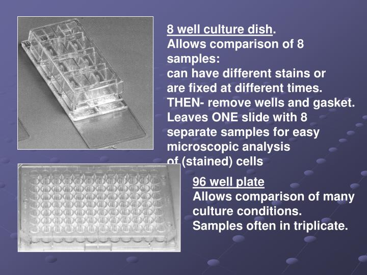 8 well culture dish